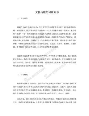 文化传媒公司策划书.doc