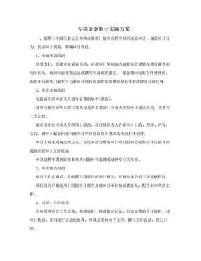 专项资金审计实施方案.doc