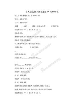 个人借条范本规范版2个 (3000字).doc