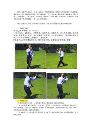 自然门内圈手_收集整理.pdf
