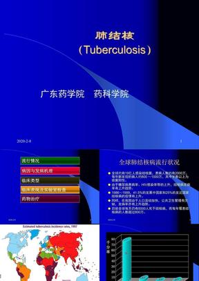 13_肺结核.ppt