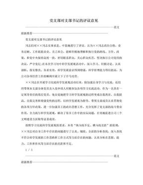 党支部对支部书记的评议意见.doc