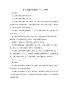 小公司规章制度范本与员工守则.doc