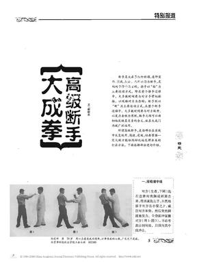 大成拳高级断手 赵祯永.pdf