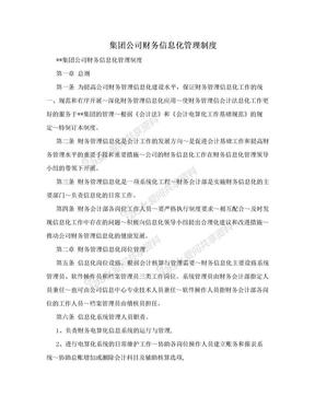 集团公司财务信息化管理制度.doc