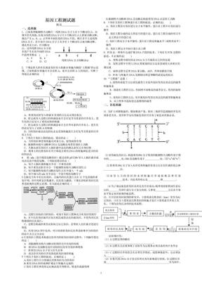 高二生物选修三基因工程测试题(含答案).doc