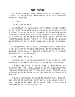 党政办个人工作总结.docx