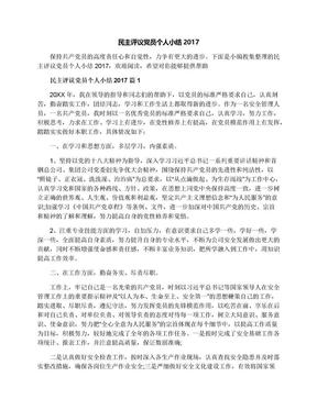 民主评议党员个人小结2017.docx