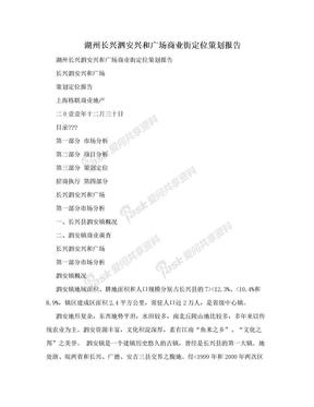 湖州长兴泗安兴和广场商业街定位策划报告.doc