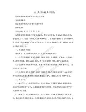 13.实习律师实习计划.doc