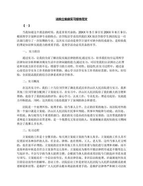法院立案庭实习报告范文.docx