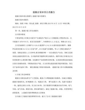 能源计量审查自查报告.doc
