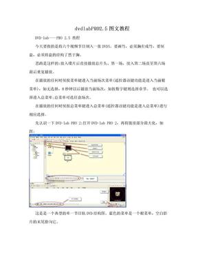 dvdlabPRO2.5图文教程