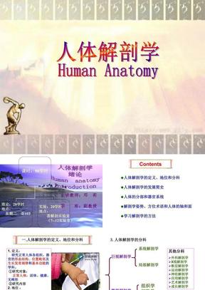 人体解剖学绪论 (2).ppt
