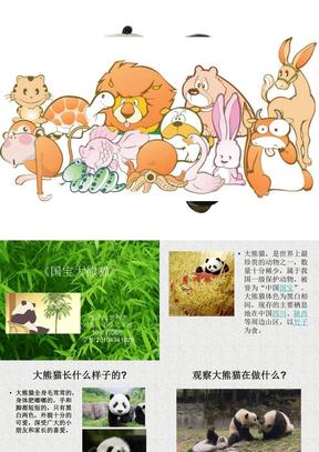 国宝大熊猫.ppt