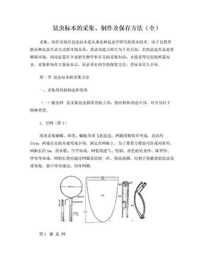 昆虫标本采集制作及保存方法(最全).doc