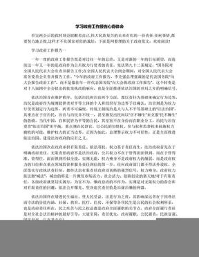 学习政府工作报告心得体会.docx