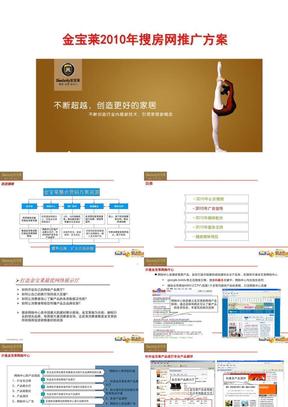 2010年度网络营销案.ppt