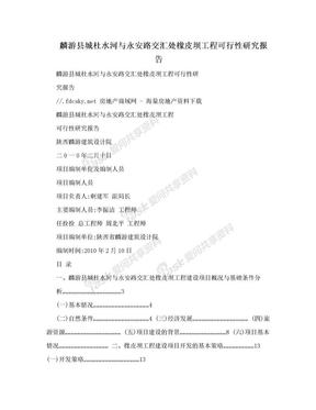 麟游县城杜水河与永安路交汇处橡皮坝工程可行性研究报告.doc
