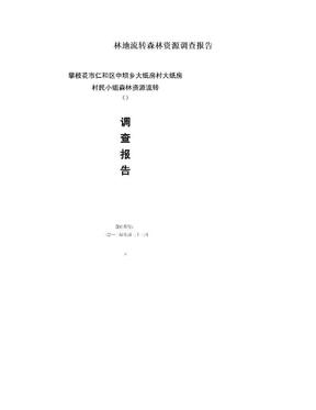 林地流转森林资源调查报告.doc
