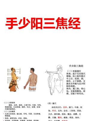 手少阳三焦经.ppt