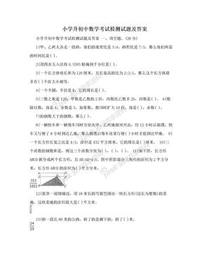 小学升初中数学考试检测试题及答案 .doc
