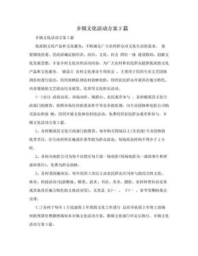 乡镇文化活动方案3篇.doc