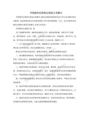 学校财经纪律执行情况自查报告.doc