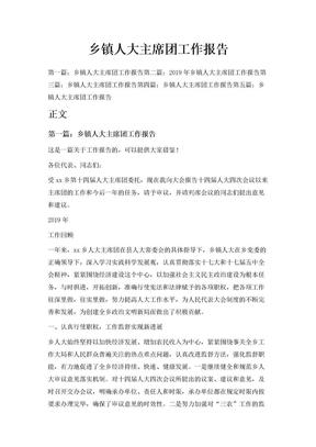 乡镇人大主席团工作报告.doc