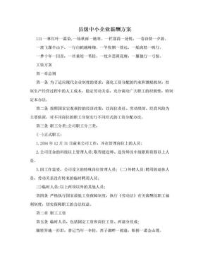 县级中小企业薪酬方案.doc