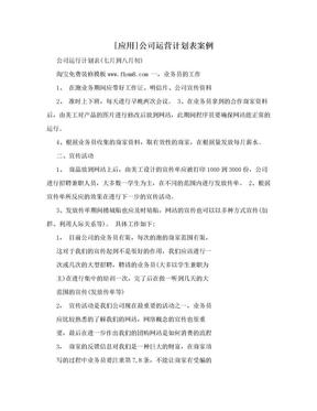 [应用]公司运营计划表案例.doc