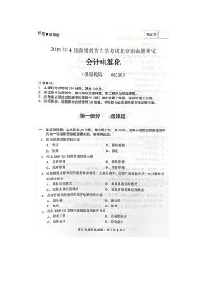 北京2019年4月自考08310会计电算化试题和答案.doc