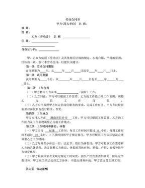 劳动合同(含试用期合同).doc