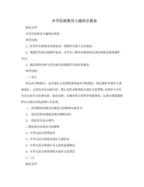 小学法制教育主题班会教案.doc