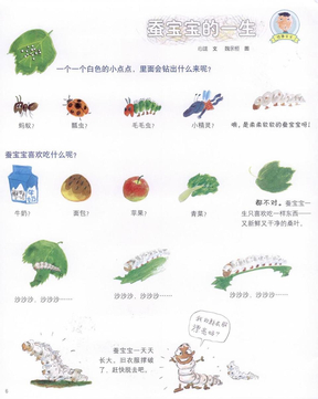 儿童绘本:蚕宝宝的一生.pdf