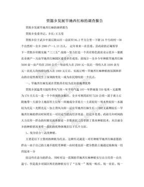 賈豁鄉發展旱地西紅柿的調查報告.doc