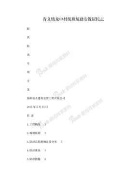 防洪防汛专项方案.doc