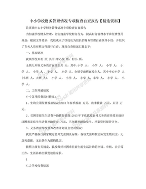 中小学校财务管理情况专项检查自查报告【精选资料】.doc