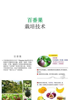百香果栽培技术.ppt