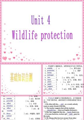 2009届高考英语第一轮课本复习课件必修二 Unit 4 Wildlife protection(人教新课标).ppt