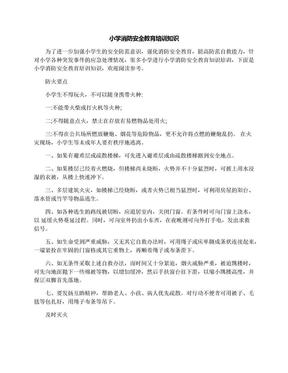 小学消防安全教育培训知识.docx