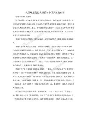 大国崛起的历史经验对中国发展的启示.doc
