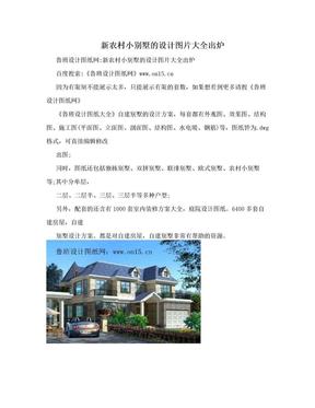 新农村小别墅的设计图片大全出炉.doc