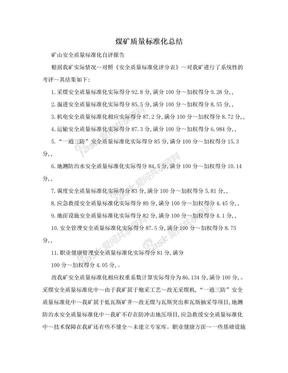 煤矿质量标准化总结.doc