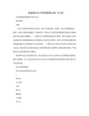 某建筑分公司管理制度(DOC 22页).doc