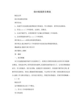 幼小衔接拼音教案.doc