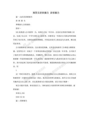 预算员辞职报告  辞职报告.doc