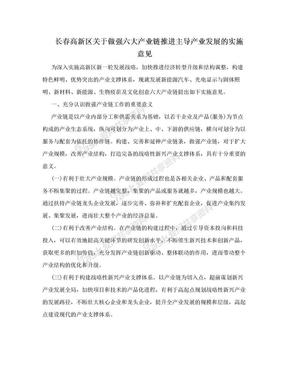 长春高新区关于做强六大产业链推进主导产业发展的实施意见.doc