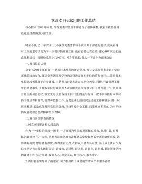 党总支书记试用期工作总结.doc