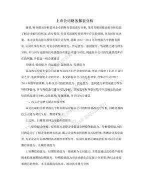 上市公司财务报表分析.doc